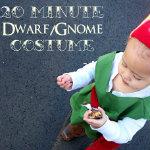 gnome- costume